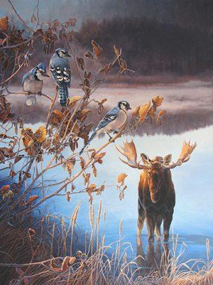 Droite - Un matin au lac Grosbeak (Orignal et geais bleus) Huile de Monique Benoit